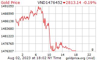 1 dag goud prijs per Gram in Vietnamees Dongs