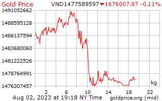 1 天黄金价格每公斤在越南盾