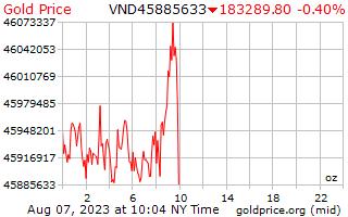 1 Tag Gold Preis pro Unze in vietnamesische Dongs